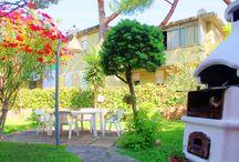 Il giardino e i fiori di Holiday Home Arzilli