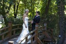 Tutto sul Matrimonio
