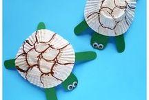 teknős béka2
