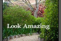 Pathways / Beautiful pathway ideas for the garden, backyard, or front walk.