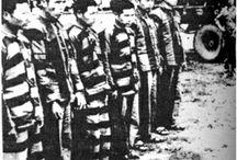 Trại tập trung tù cải tạo