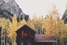 >>>cabin fever>>> / by Lindsay Loisel