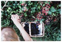 Tuin / Als ik tijd overheb, alle dingen om de tuin mooi te maken