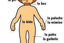 mood board expression française