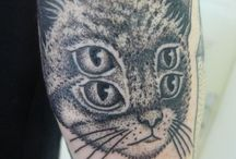 Cattoo / by Petcurean