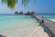 Maldive - Maldives / Tutti i viaggi alle Maldive - Raccontati con Giruland. Il tuo Diario di Viaggio.