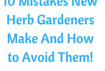 10 mistakes New Herbs Gardens Made and How to Avoid them