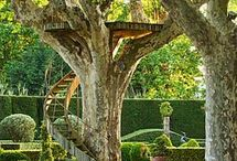 tree house / tree house ideas for the new house
