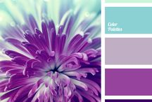 Colour palette's