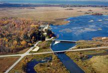 Minnesota Land of 10,000 Lakes / by Dee Sheff