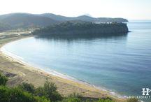 HalkidikiTravel.com - Azapiko beach in Halkidiki