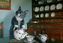Tea and life