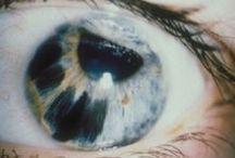 - mutation -