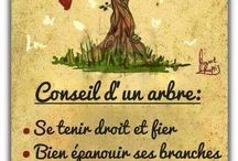 Citations inspirantes / Citations sur la vie, l'amour, le respect ...