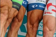 pro cyclists legs muscle