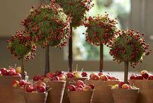 szyszki topiary / szyszki i ozdoby z szyszek