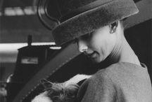 Audrey / Everything Audrey Hepburn / by Jenny