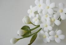 flor 2