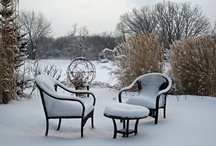 Celebrate in  Winter / by Lisa Attarian