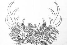 Antlers, deer