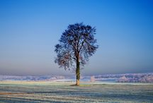 A YEAR IN NORMANDY : L'HIVER  The Winter. / The Haras du Gazon from the winter solstice on December 21 to the spring equinox.  Normandy through the seasons