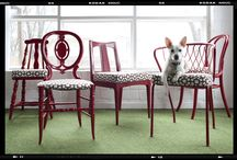 dining room chair ideas / by Abby Warren