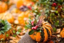 Halloween / by La CuisineHelene
