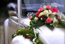 wedding bugs