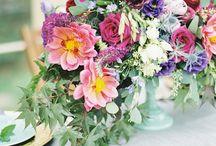 Colorful Weddings / Colorful Weddings