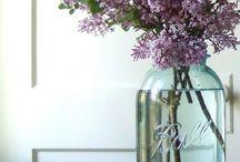 Flowers / by Doreen Martin