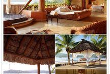 Vacation Options