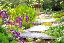 In the Garden / Garden inspiration ideas!