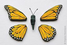 farfalle in quilling