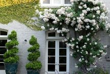 Inspiring Outdoor Spaces / Wonderful ideas to create cosy and dreamy spaces for your summer garden.