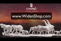 WIDEN SHOP Videos