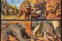 """Postabenteuer """"Der tasmanische Tiger"""" / Fundstücke und interessante Fotos rund um das erste Postabenteuer """"Der tasmanische Tiger"""". Mehr zu dem Projekt erfahrt Ihr auf www.knisterkiste.com."""