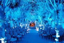 James and Amie's Wedding Board / Theme: Fire and Ice Wedding Date: December 2012