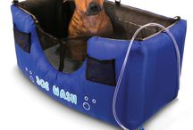 Dog products / by Sharon Dunnigan