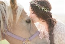 Bride horse