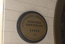 samelia Beach