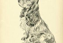 Hond tekenen