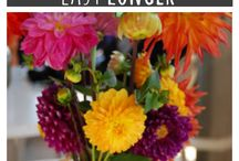 Ideas for the home / by Krista Weisner