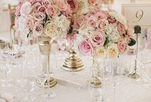 Blush Nude and Gold theme