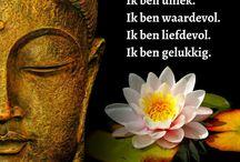 Quotes en wijsheden in het Nederlands