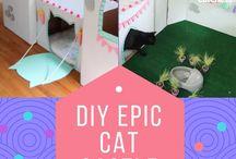Katzen DIY