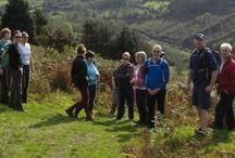 Tinahely Walking Club – join us! / Walking is a wonderful way to get to know our countryside and enjoy our natural environment.  All welcome. For further information please call the Club Secretary Maeve Hudson at 087 6693838.