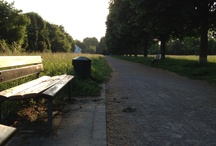 pure nature / pics taken spontaneously whilst traveling | walking | hanging out | relaxing | enjoying | talking