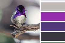 Design seed swatches / Blanket ideas