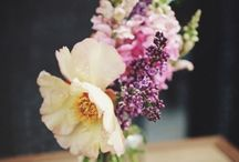 Jam jar flowers / Spot the wows, the inbetweenies and the wispies #FlowerStart