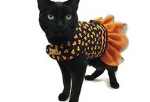 Kawaii For Pets / Super cute products and crafts for your pets